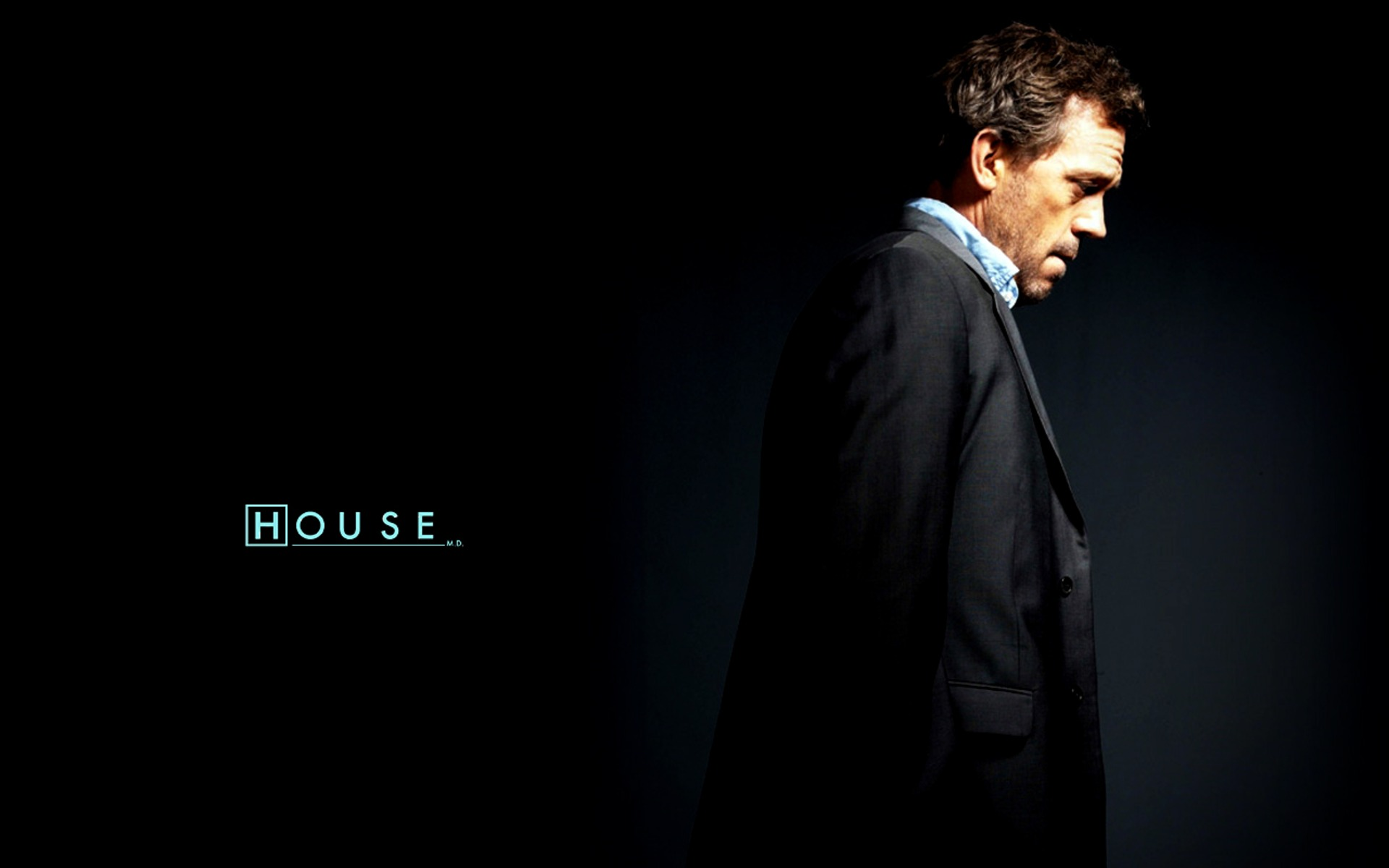 Hugh Laurie House Wallpaper  wallpaper Home Wallpapers and Home Backgrounds In HD For Download 1920x1200