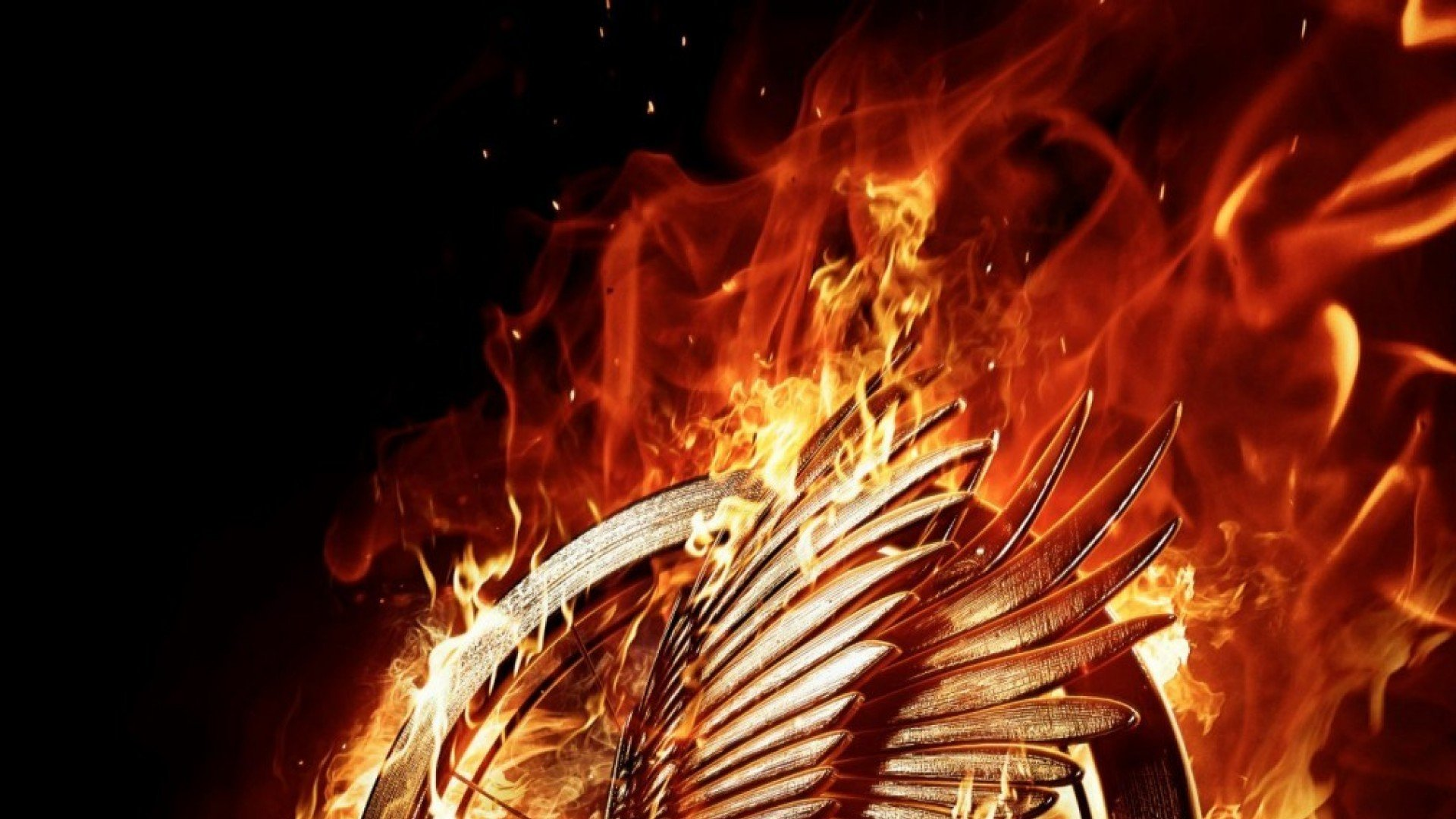 Hunger Games Mockingjay Part 1 Wallpaper