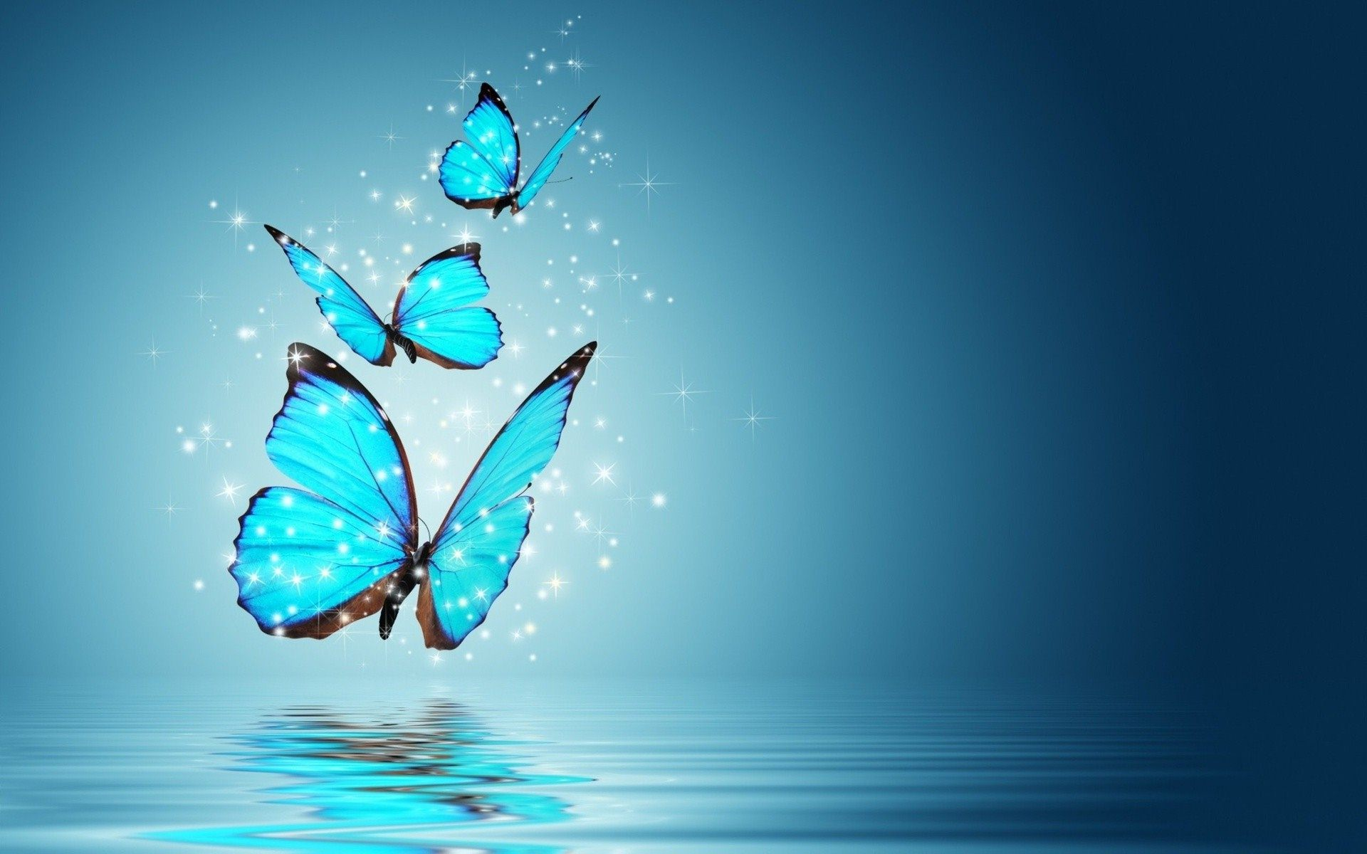 Beautiful Butterfly Wallpapers  Android Apps on Google Play 1920x1200
