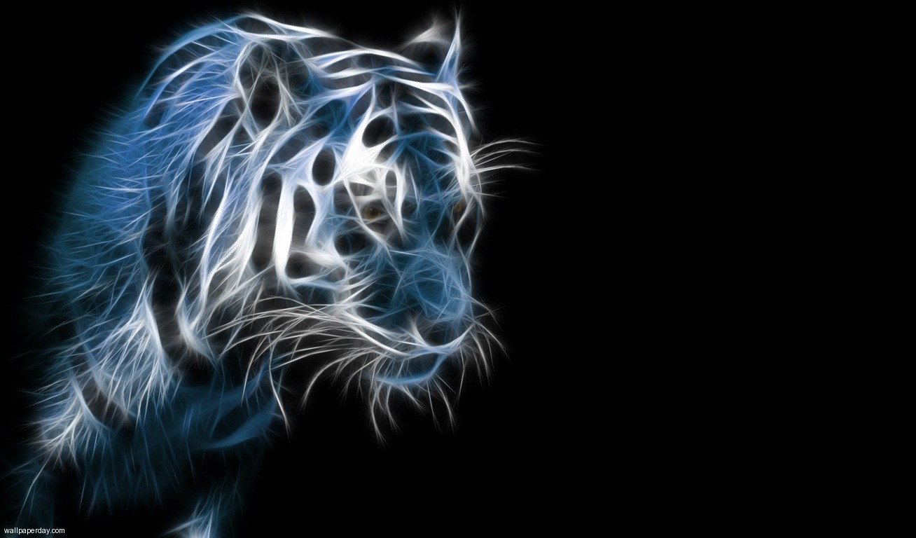 Free Tiger Wallpapers For Desktop  Wallpaper  1308x768
