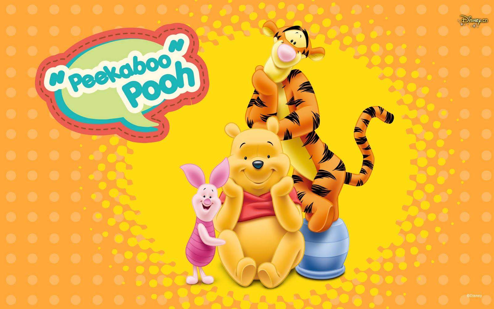 Winnie Pooh Wallpapers  Winnie Pooh Awesome Photos Collection 1600x1000