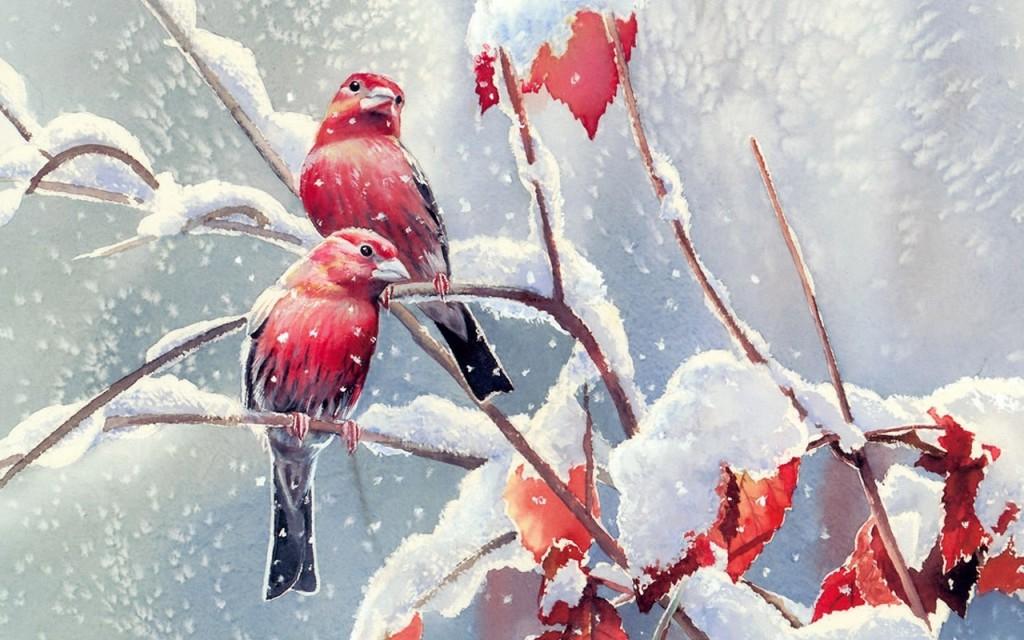 Pink Love Birds Wallpaper More Information 1024x640