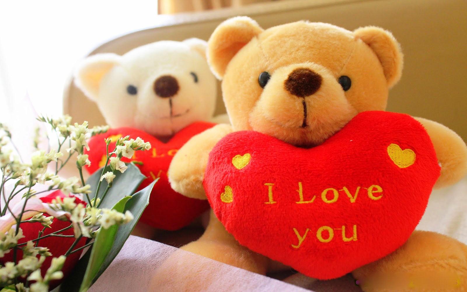 cute plush teddy bear wallpapers hd hd desktop wallpapers 1600x1000