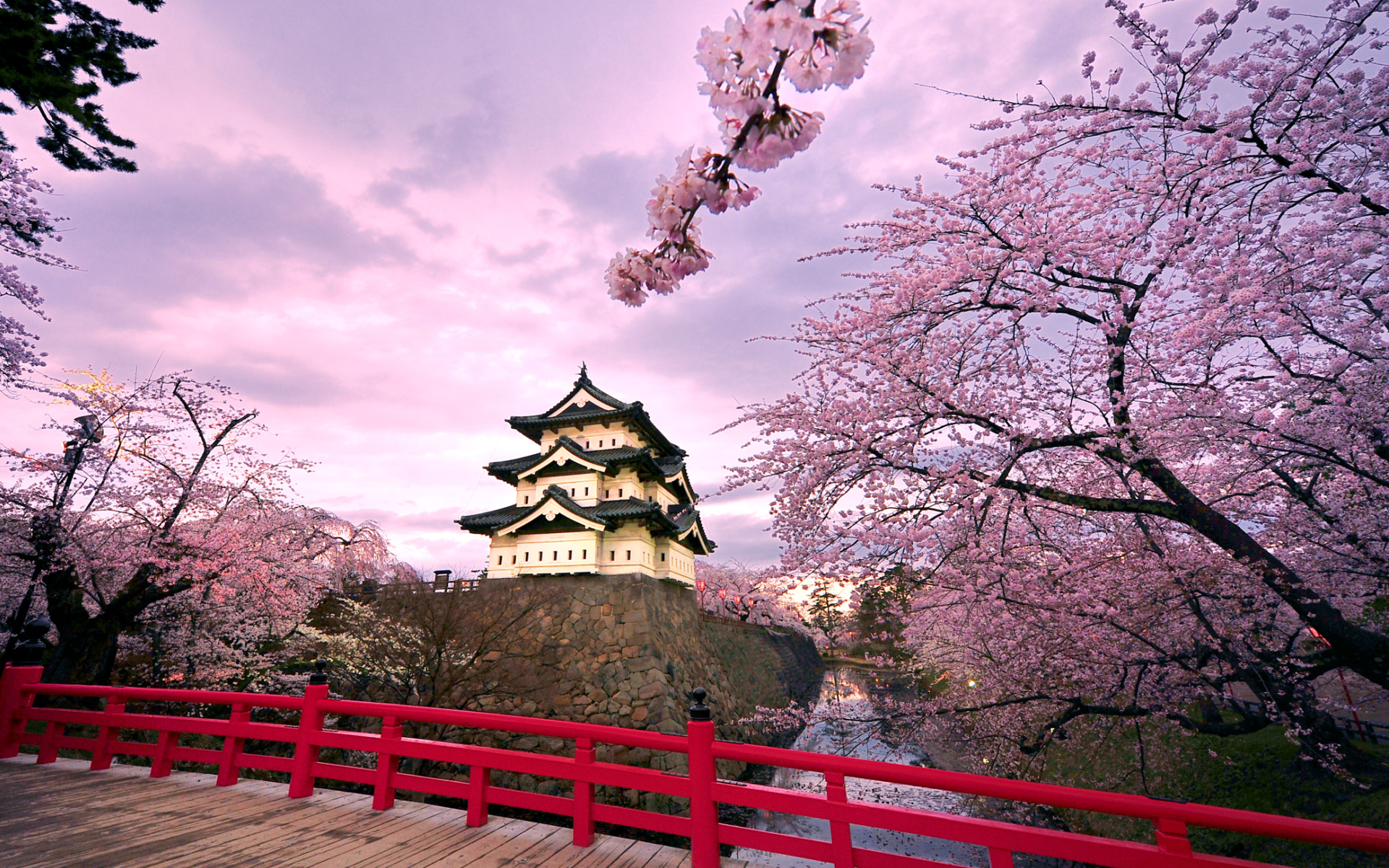 images about Japanese wallpapers on Pinterest  Cherry 1920x1200