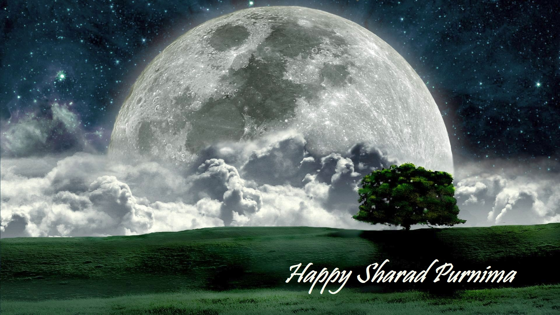 Happy Sharad Purnima Beautiful