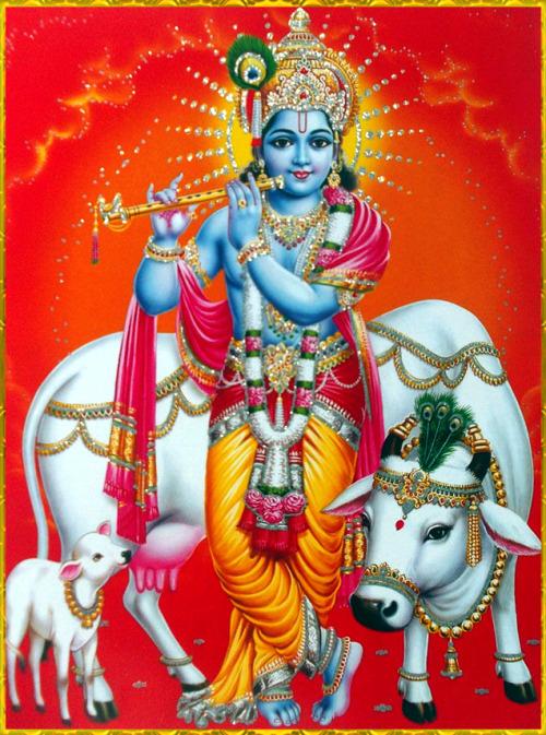Best Radha Krishna Hd Wallpapers Free Download New 500x673