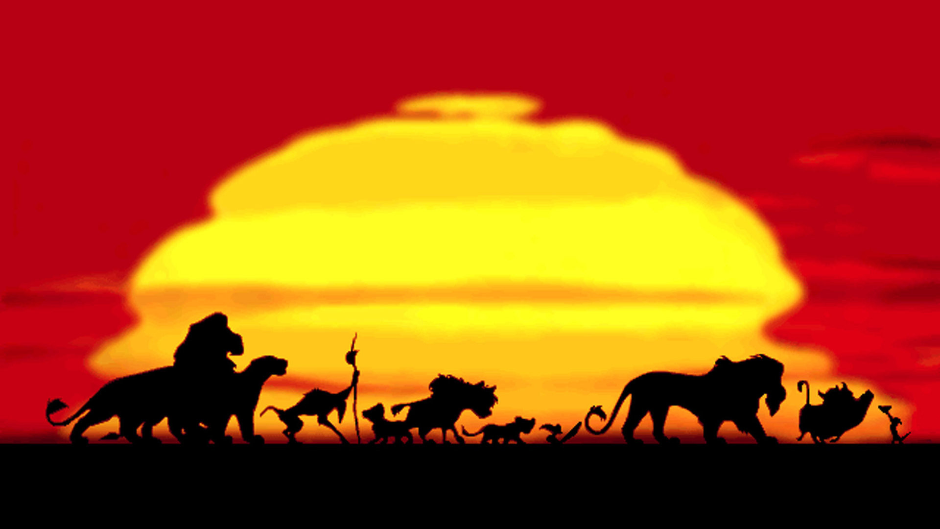 Majestic Lion King Wallpaper By Hd Wallpapers Daily 1920x1080