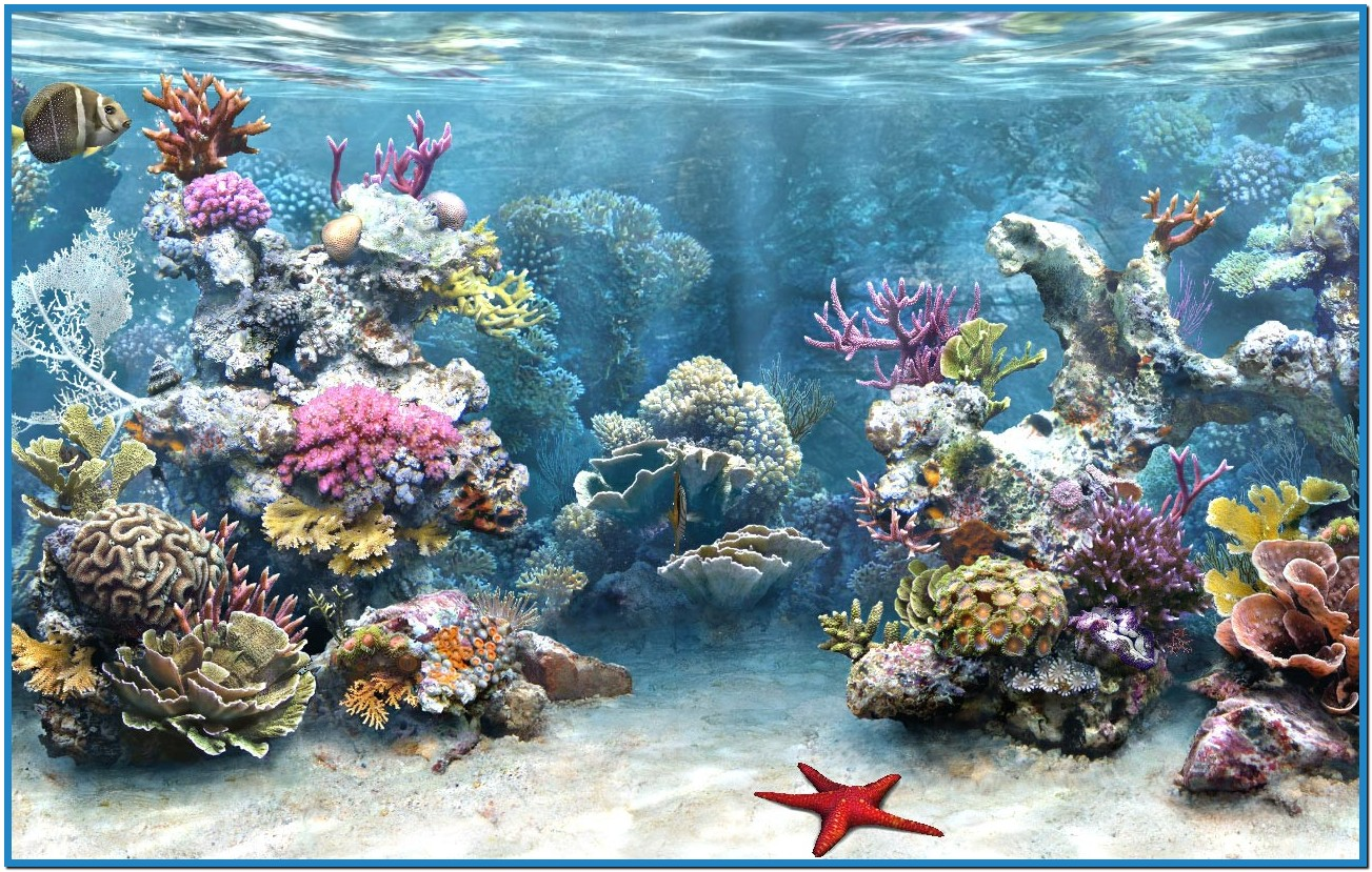 Aquarium Free Live Wallpaper   1303x829