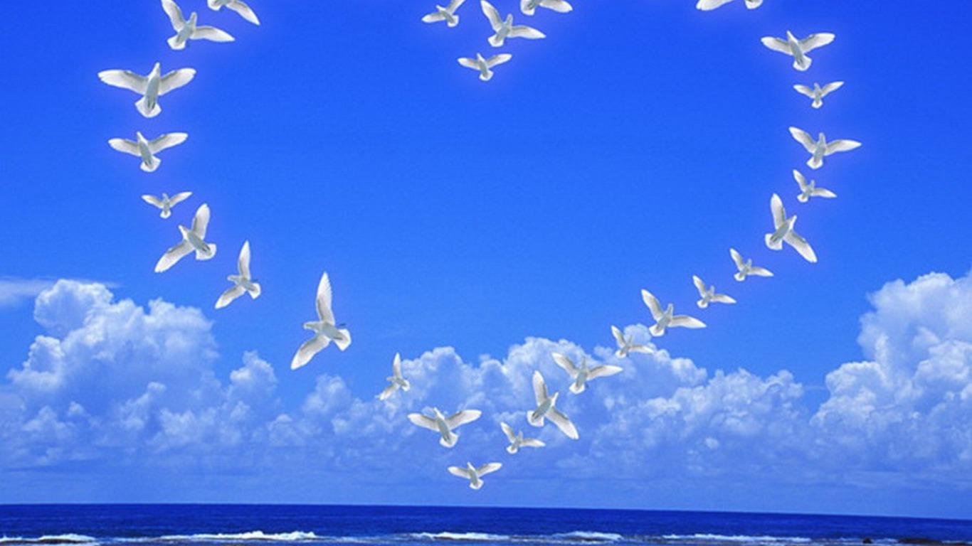 Птицы в небе открытки