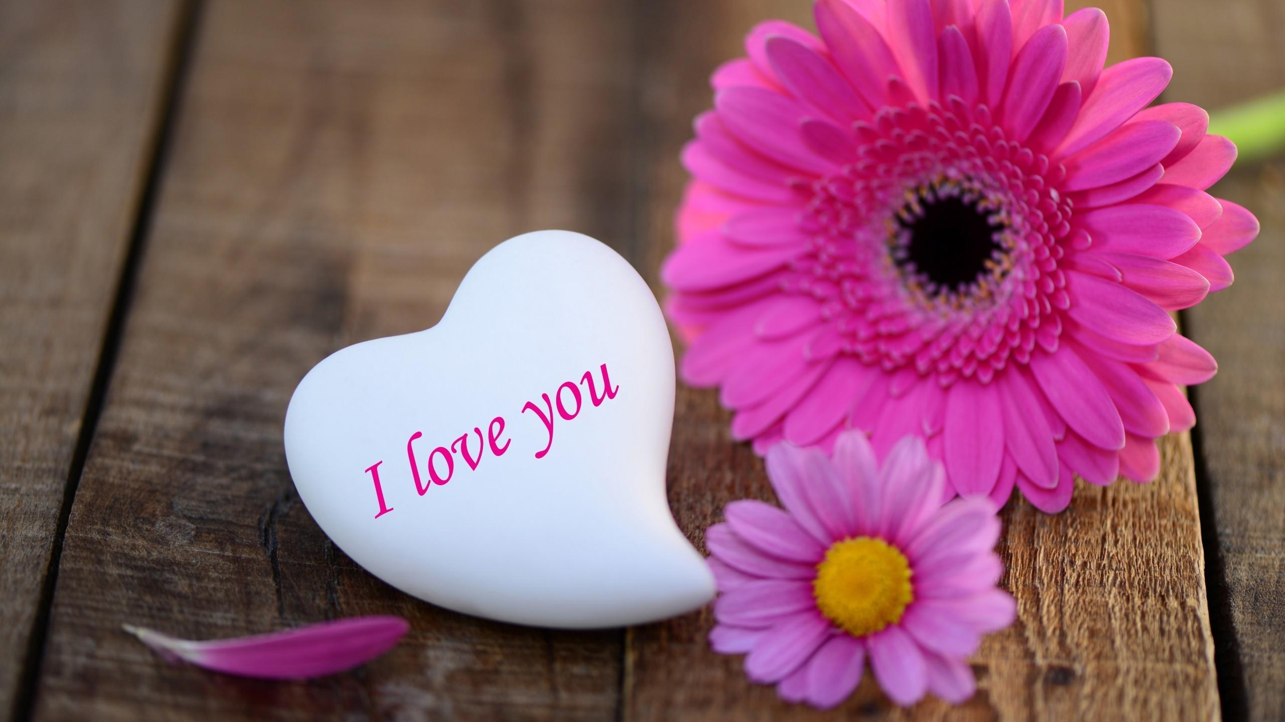 Beautiful love flowers photos the best flowers ideas 2560x1440 izmirmasajfo