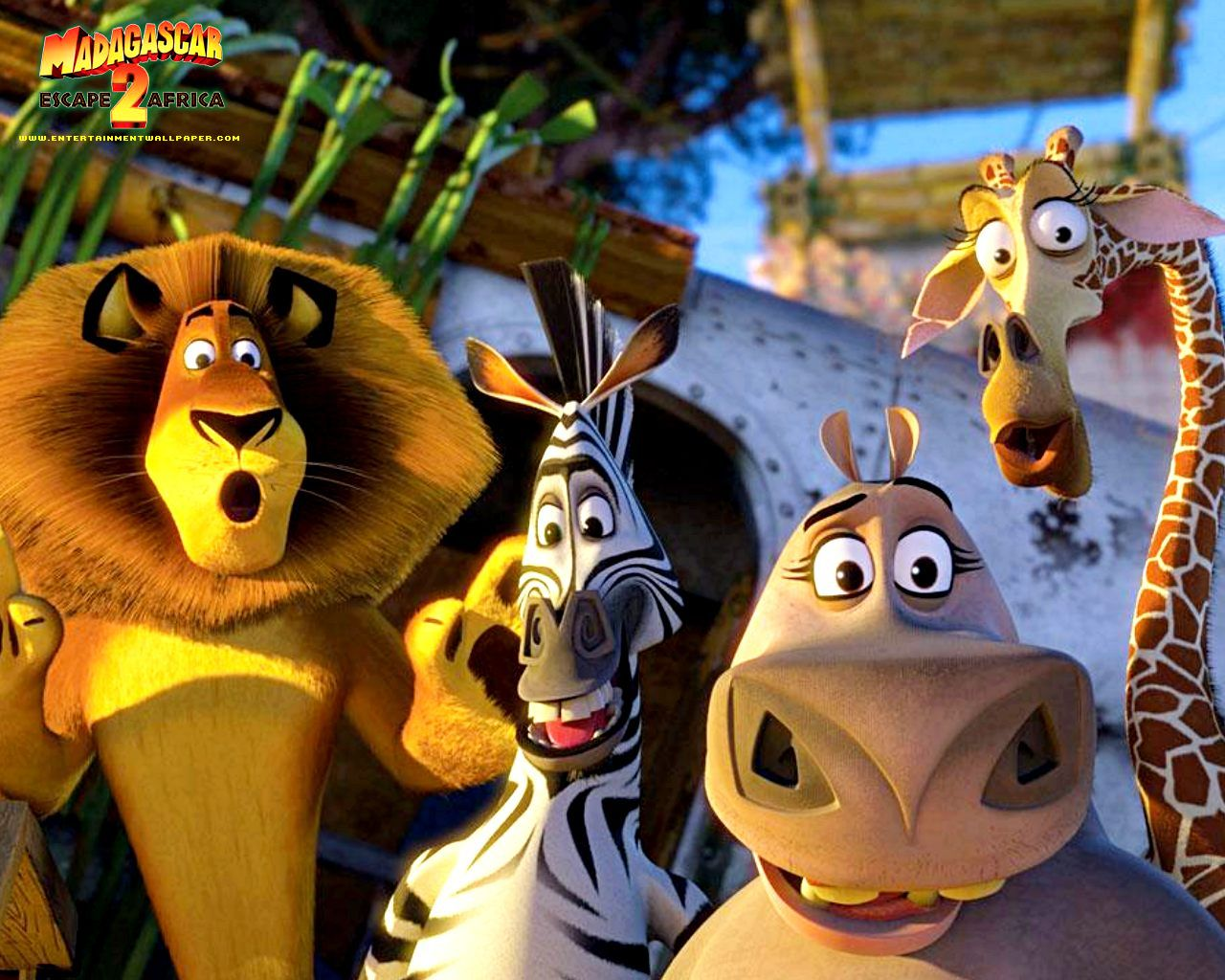 Madagascar  Movie Cartoon Full HD Image Wallpaper for iPhone  1280x1024