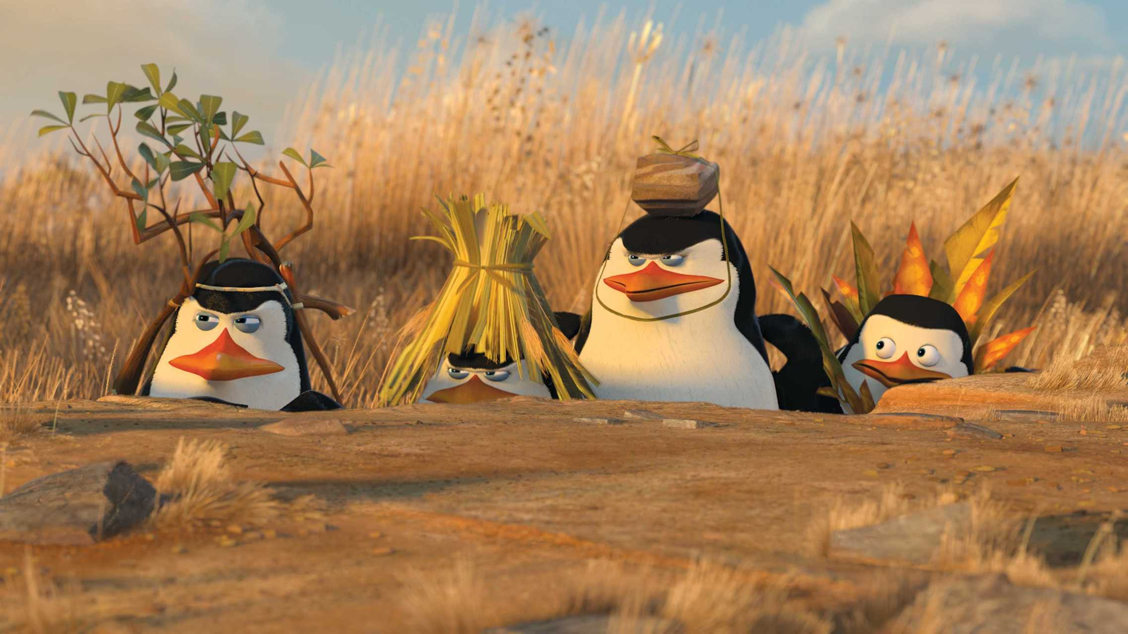 Penguins of Madagascar Funny Movie wallpaper  wallpaper free download 2275x1280