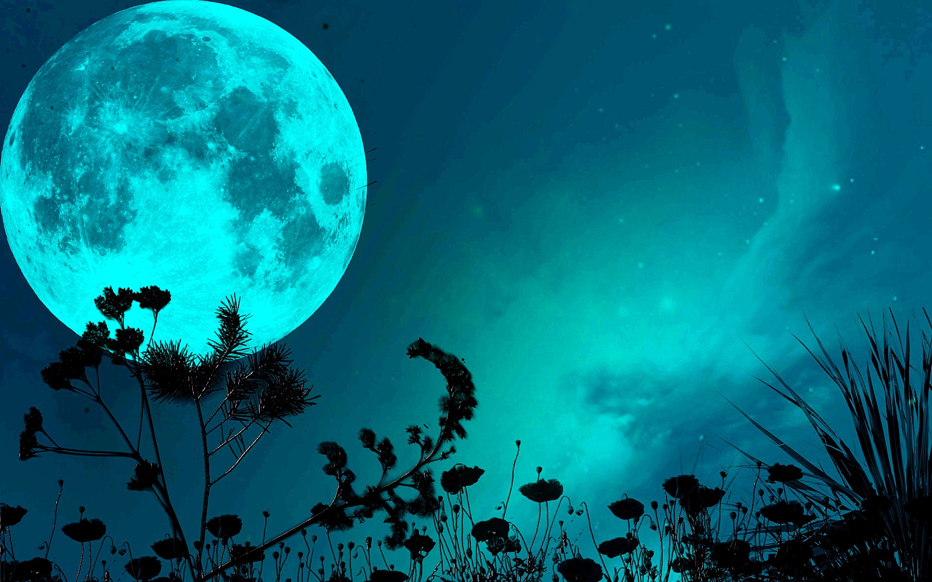 Shimmering Beautiful Moon HD Wallpapers 1920x1200