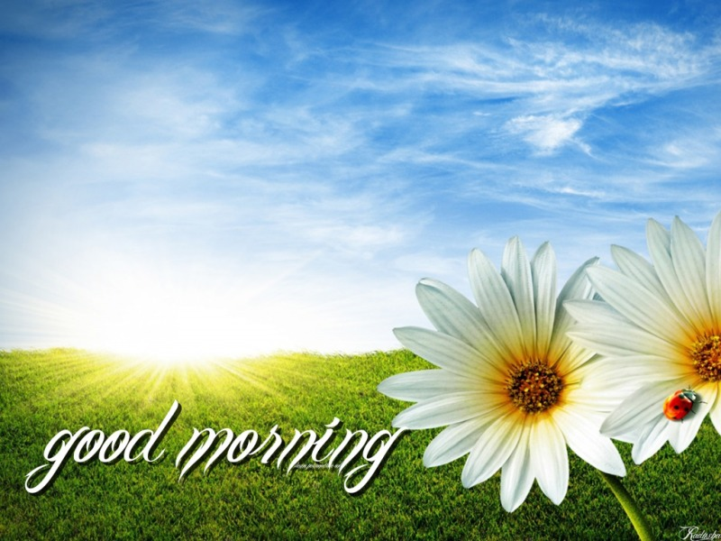 images about Good Morning on Pinterest  Inspirational good 800x600