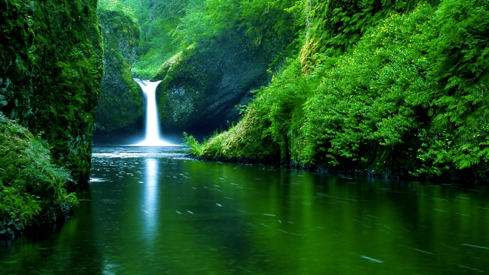 nature live wallpapers 017