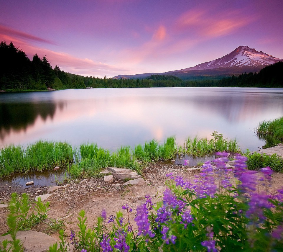 Nature Images Wallpapers Hd Free Download For Mobile Desktop 960x854