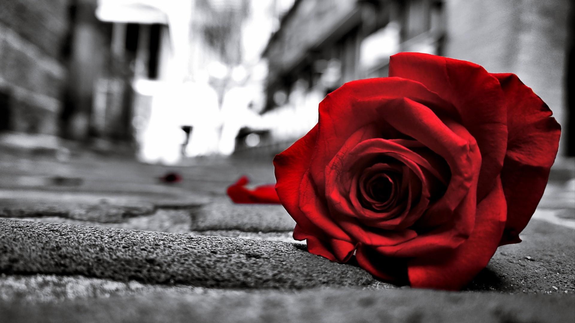 Very Sad Love Breakup Boys Girls Whatsapp DP Images Photo rh