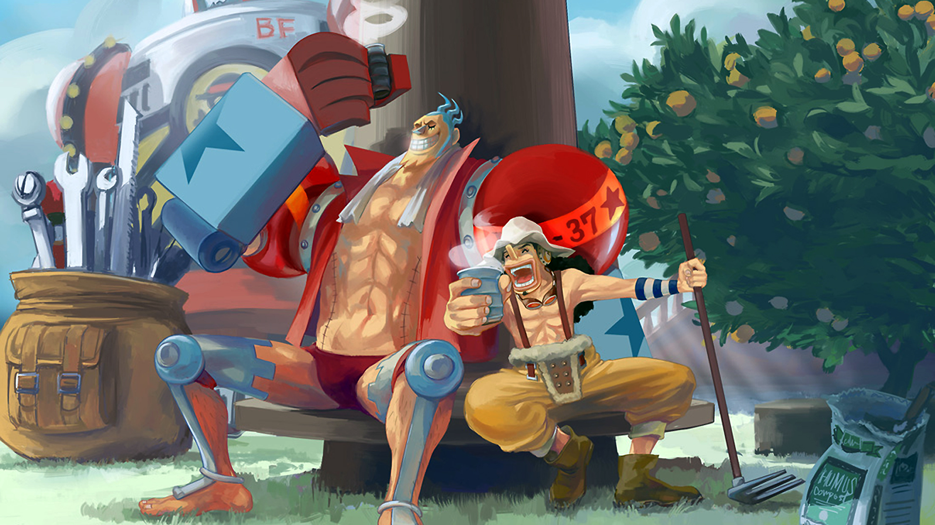 One Piece Wallpapers 1366768 47 Wallpapers Adorable