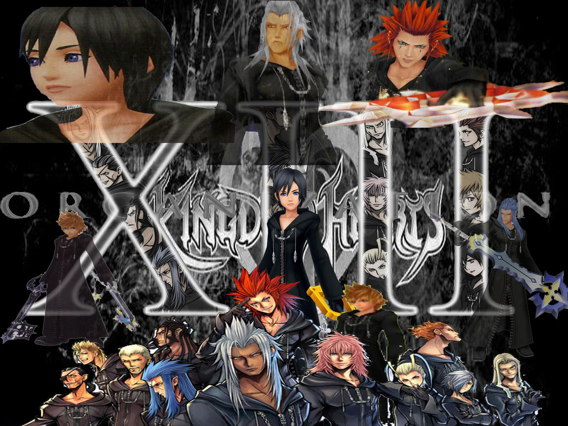 Organization XIII (Cosplay).png
