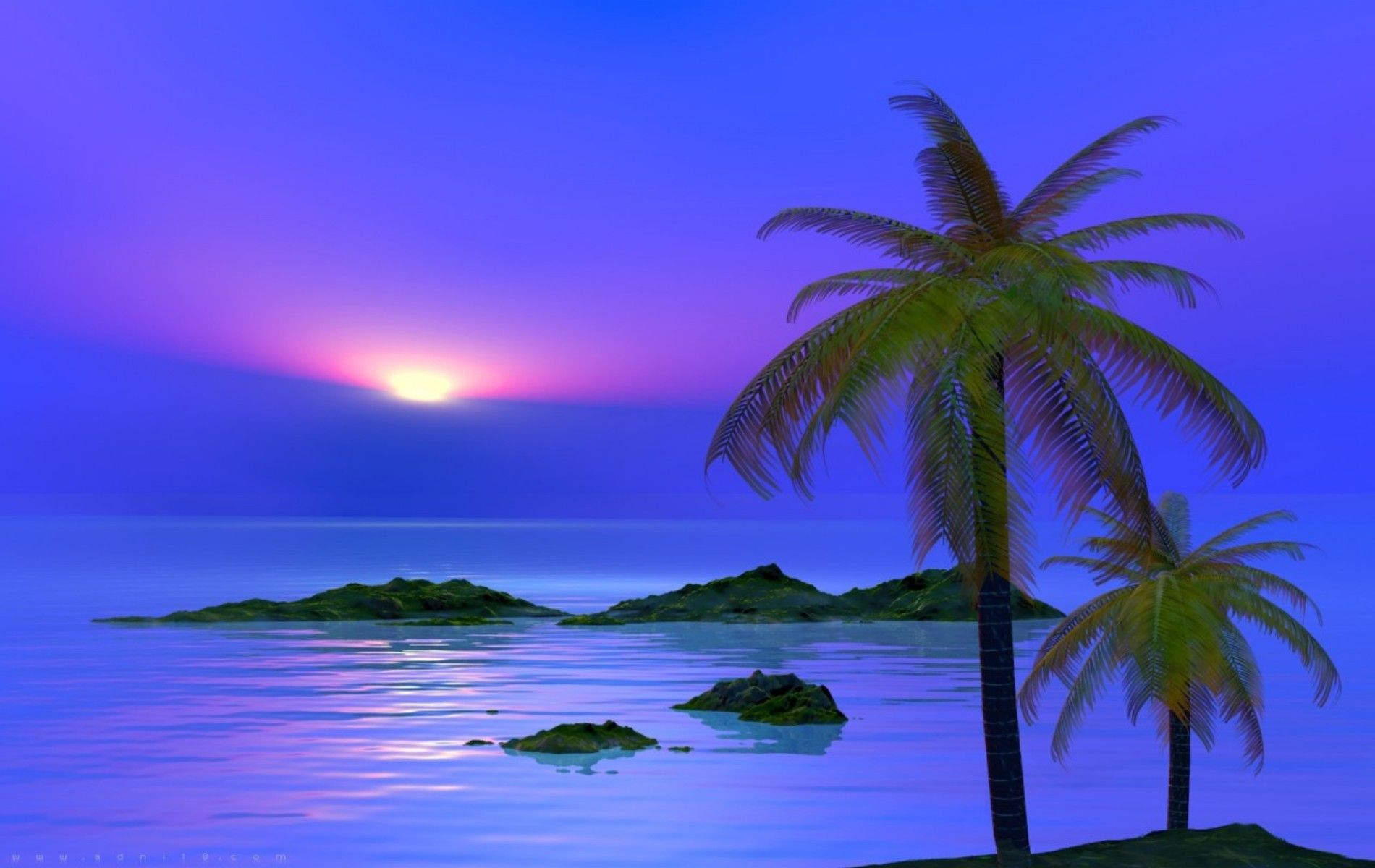 images about palm tree beach wallpaper borders on 1900x1200