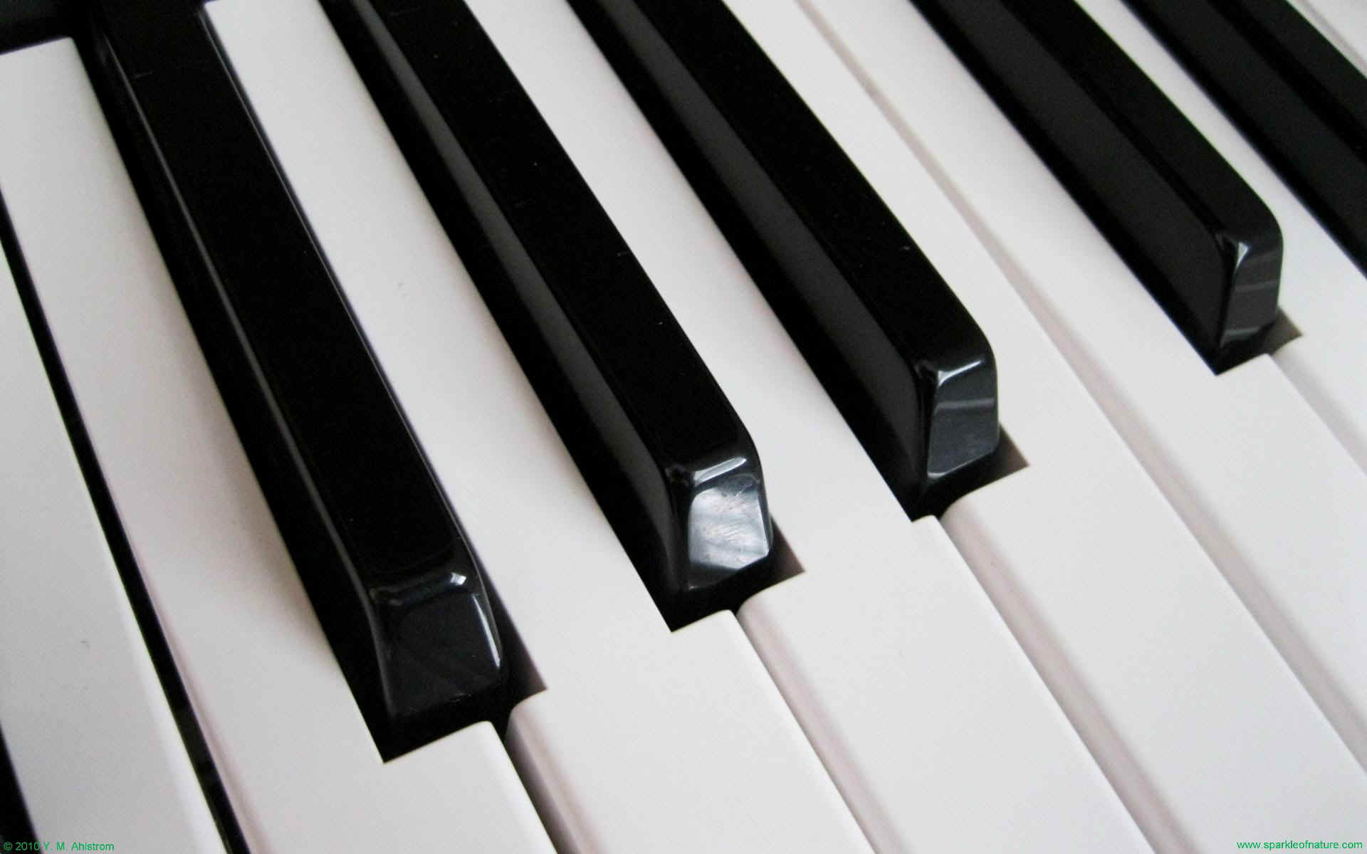 Keyboard Piano Wallpapers High Definition Scerbos Best Images About Keys On Pinterest The Killers Piano Girl 1920x1200