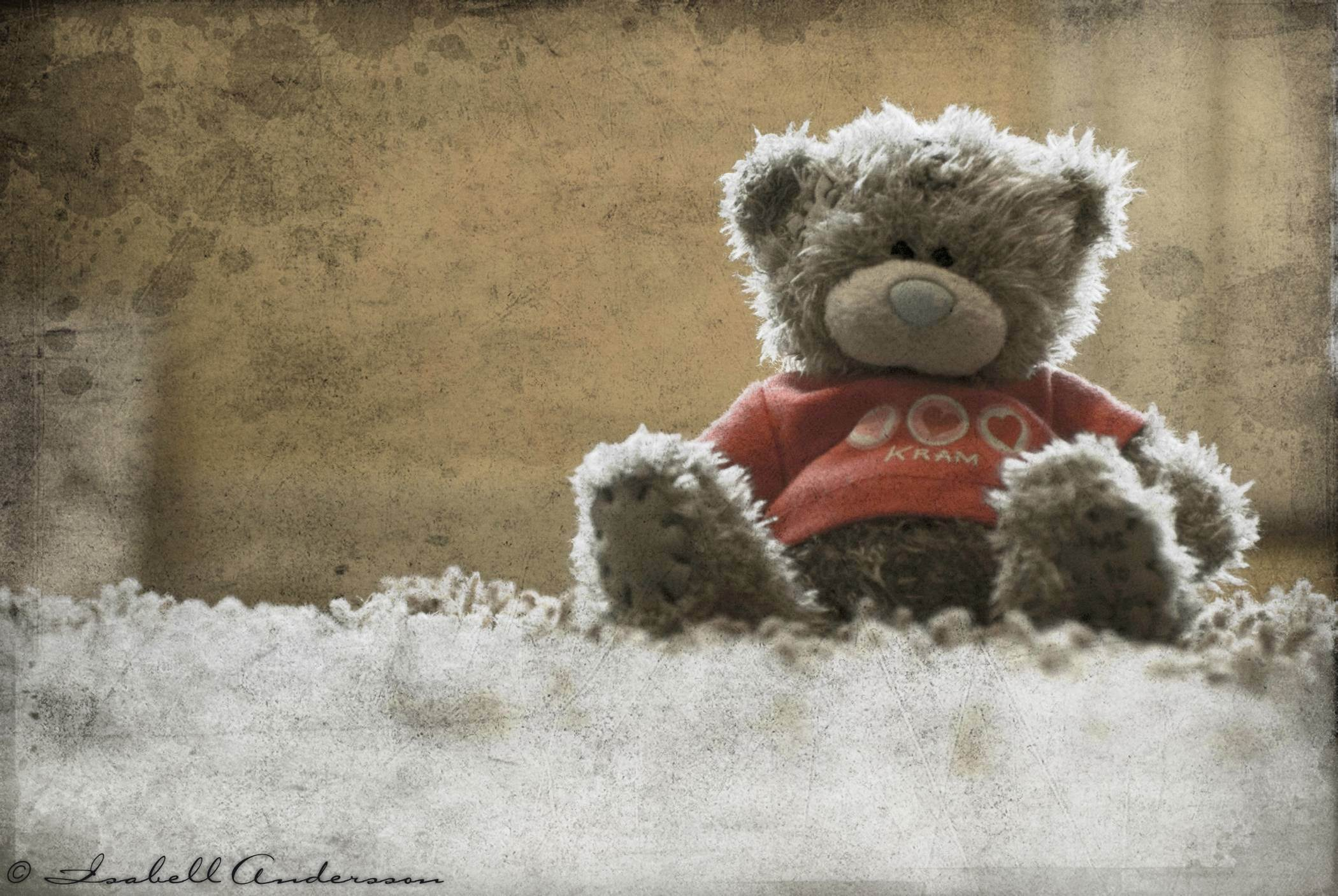 Cute Teddy Bear Pictures HD Images Free Download desktop 2100x1406