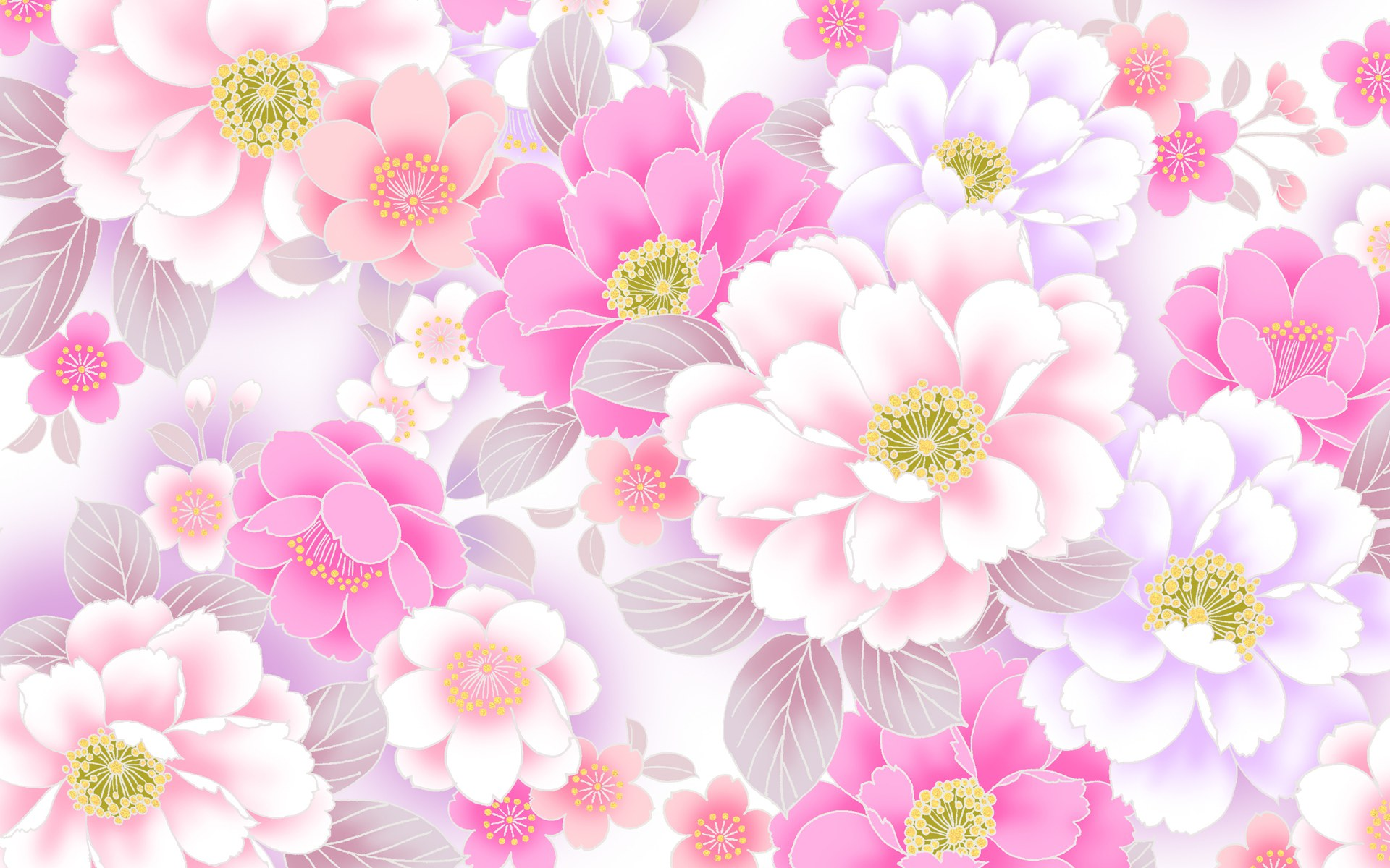 Drops On A Pink Flower Wallpaper Wallpaper Free Download 1920x1200