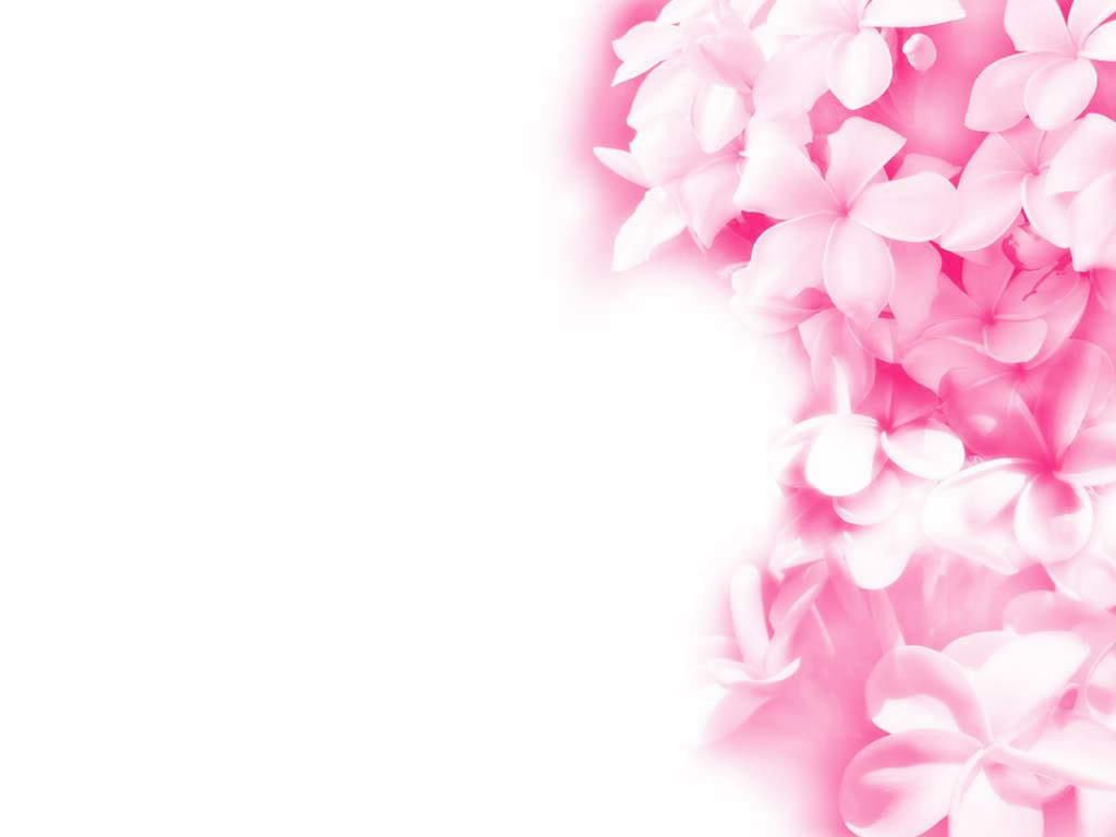 Pink flower desktop wallpapers wallpaper 1024x768 mightylinksfo