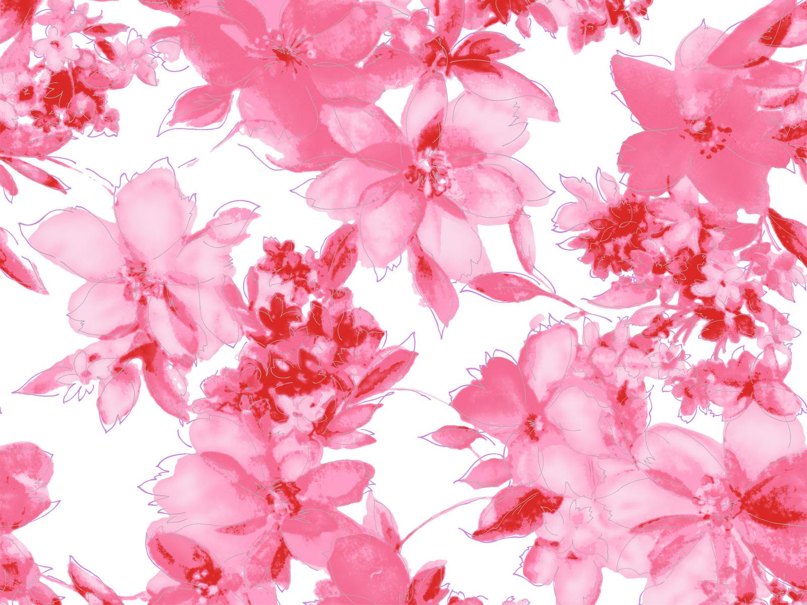 Pink Flower Desktop Wallpapers Wallpaper 1600x1200