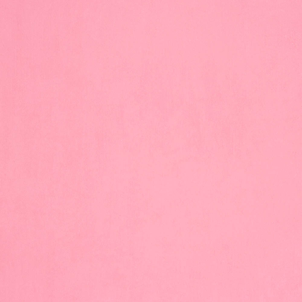 Plain baby pink backgrounds