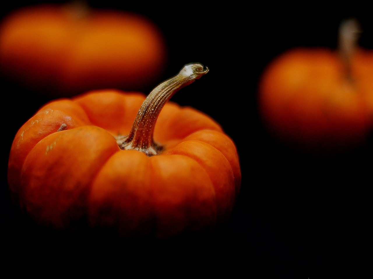 Pumpkins Desktop Calendar Free October Wallpaper 1280x960