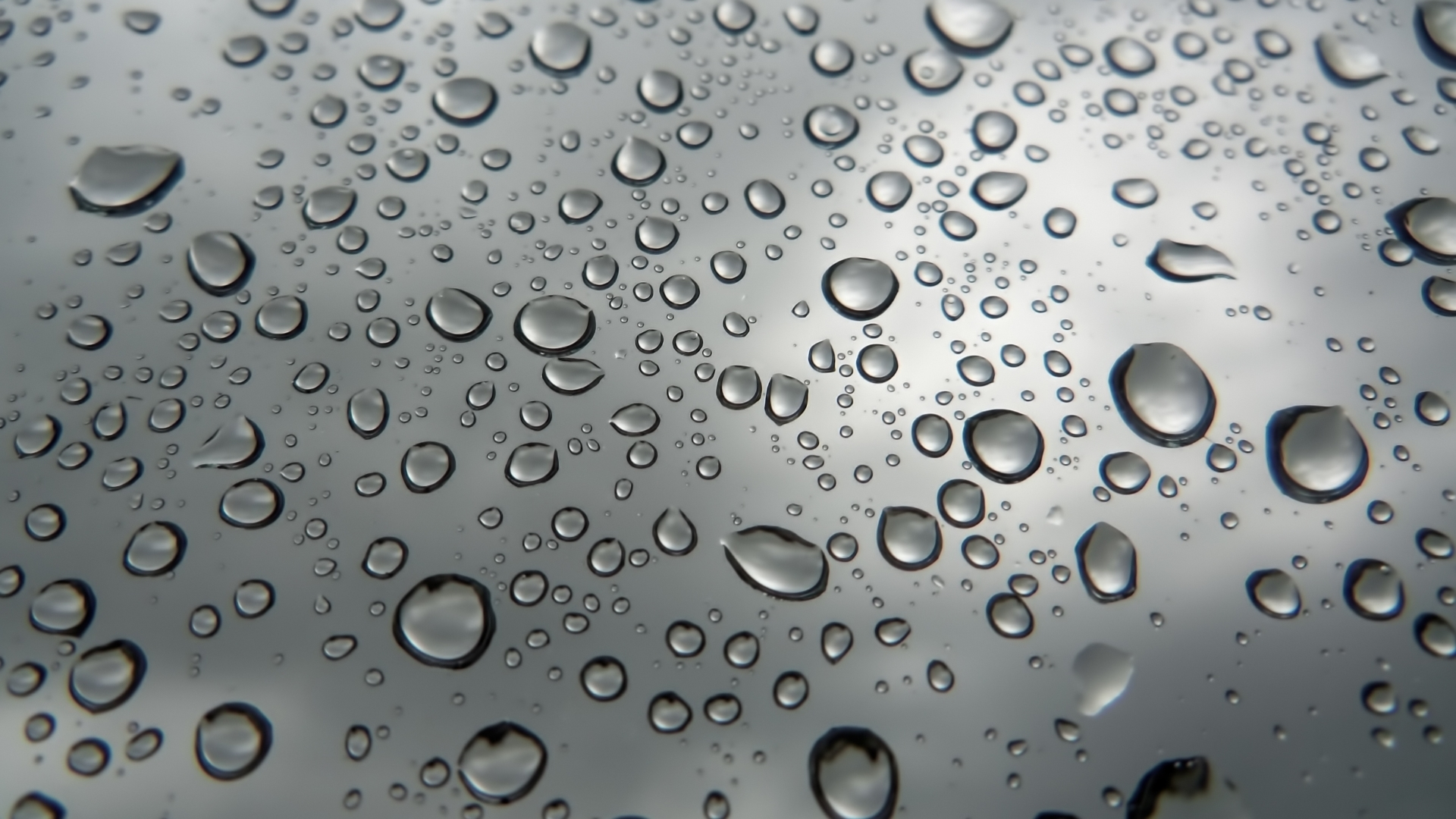 Rain Drops Wallpapers wallpaper Raindrops Live Wallpaper HD Android Apps on Google Play 1920x1080