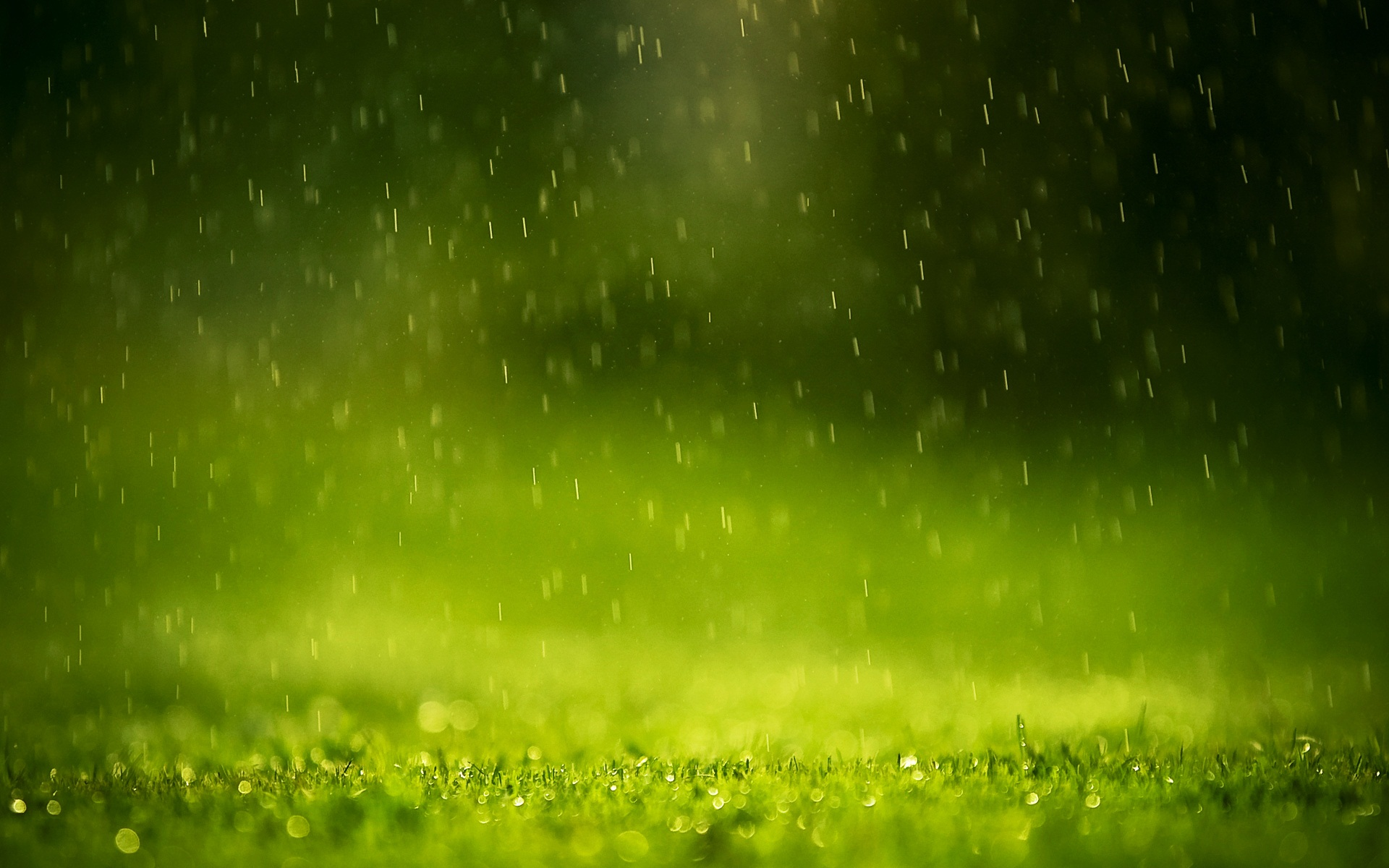 Wonderful Raindrops HD Wallpapers for inspiration  Digital 1920x1200