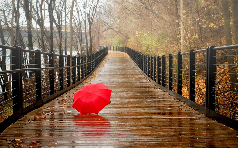 Beautiful Rainy Seasons Wallpapers Images Hd Wallpapers Buzz 1440x900
