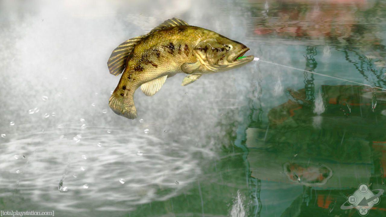Fishing Lure Wallpaper 1280x720