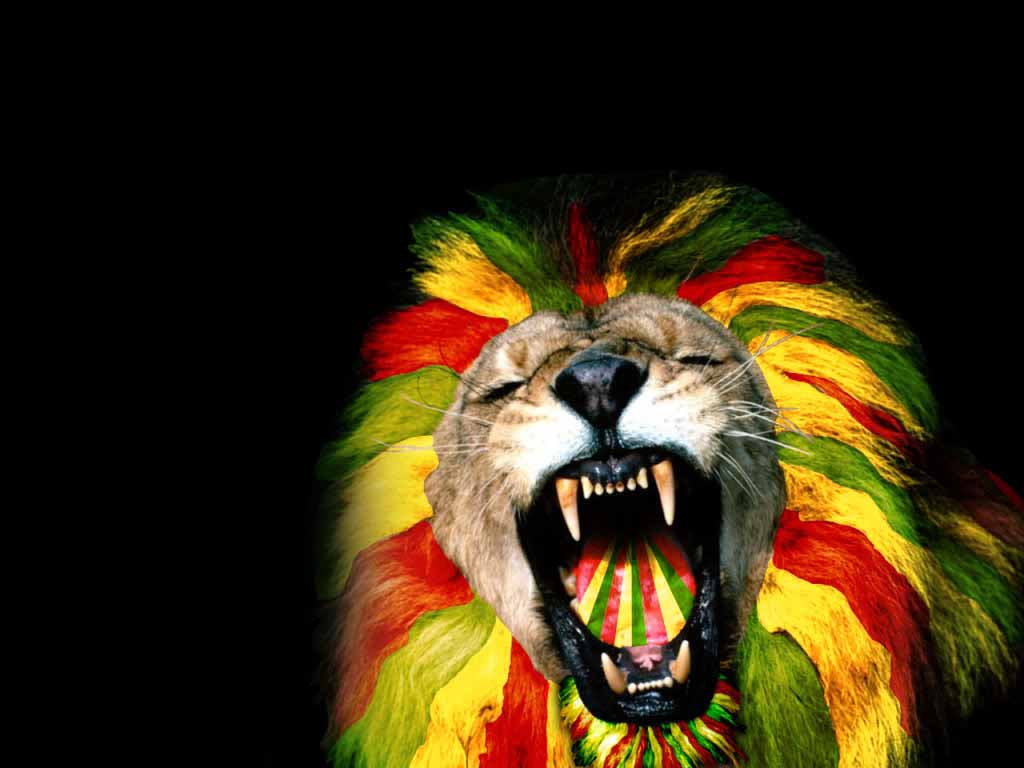 Trippy Lion Wallpaper   1024x768