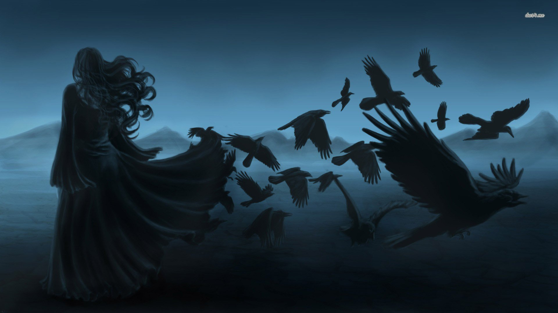 Raven HD Wallpapers  Backgrounds  Wallpaper  1920x1080