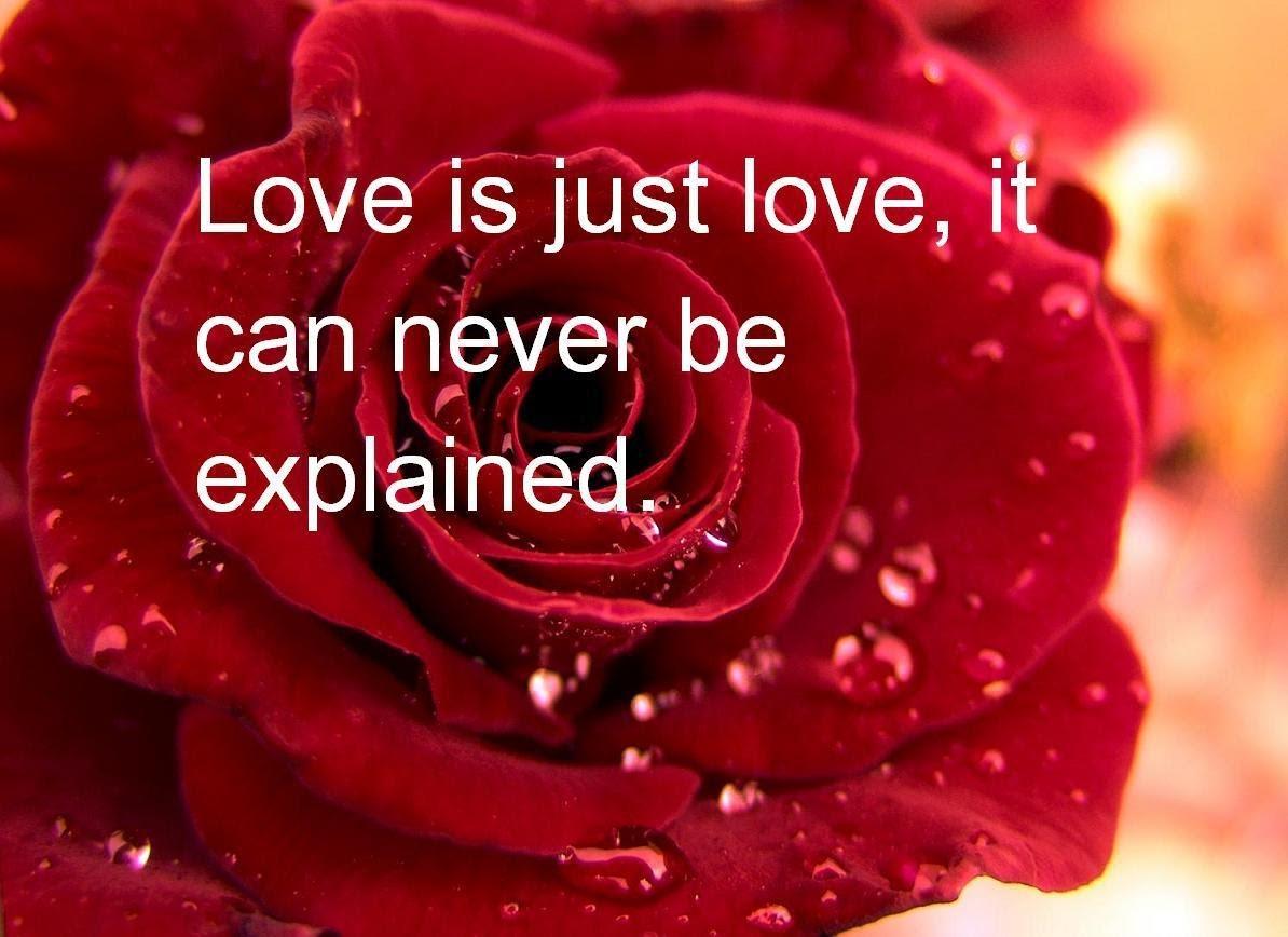 romantic love hd images free download free hd wallpaper 1194x868