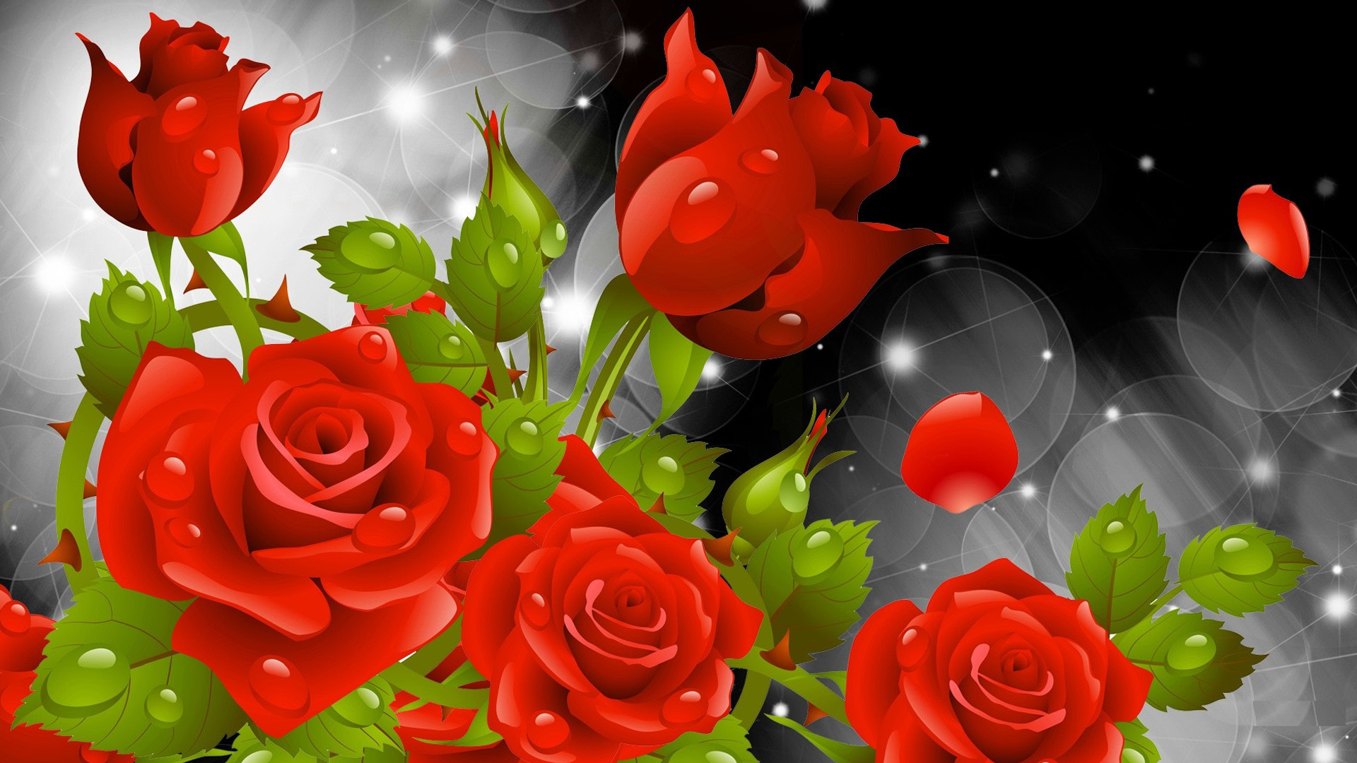 Beautiful Roses Wallpapers Funmag Beautiful Roses Wallpapers Funmag