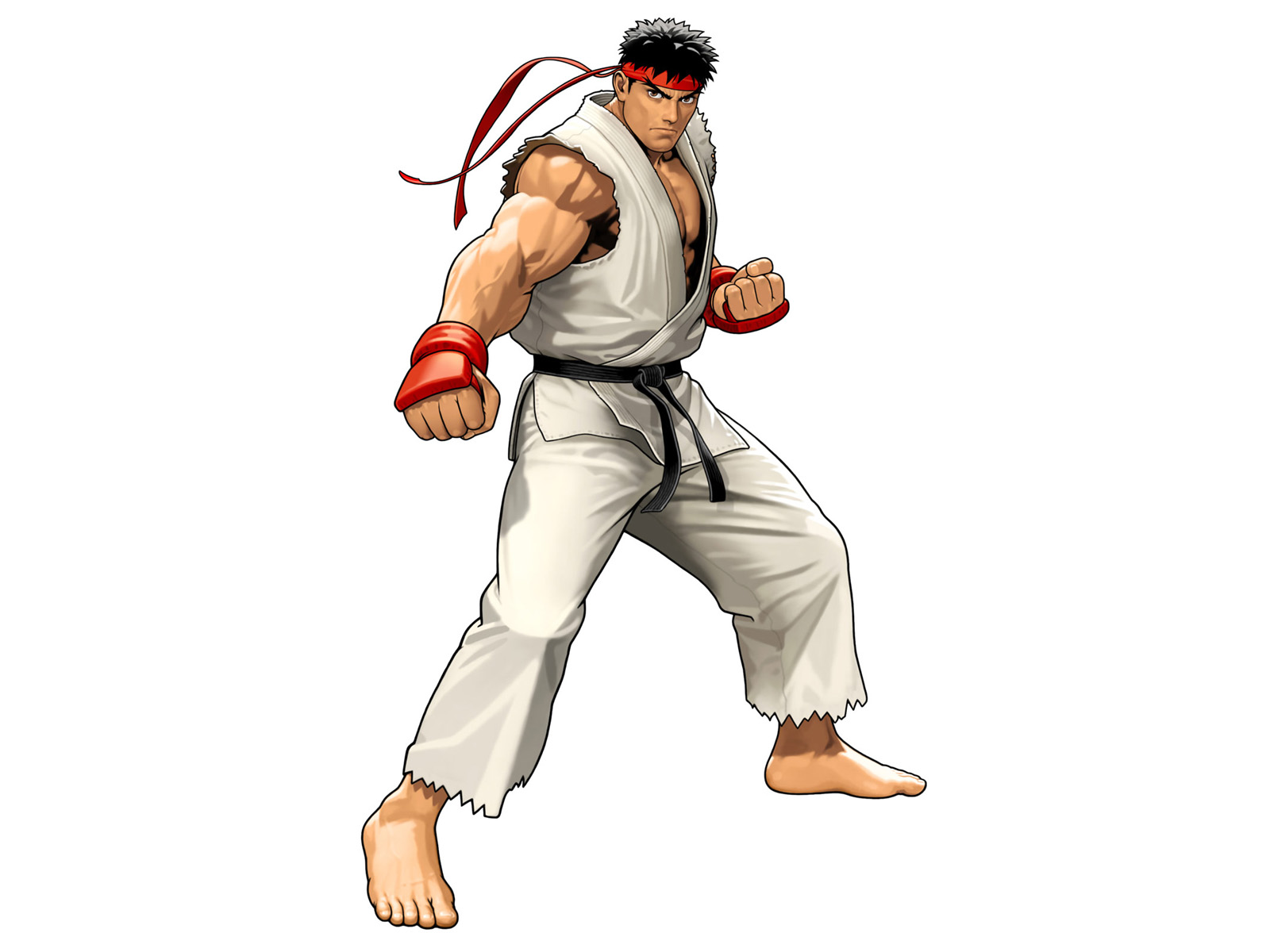 WallpapersWide  Street Fighter HD Wallpapers  Backgrounds  Wallpaper  1600x1200