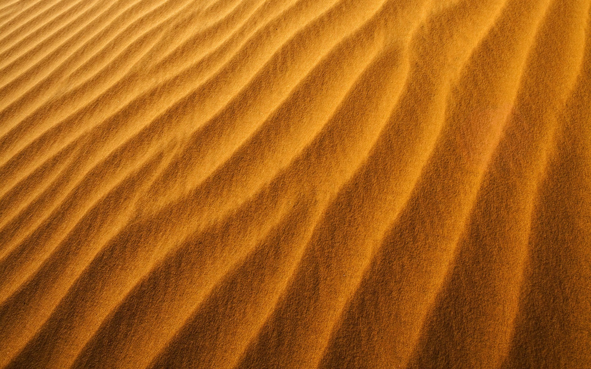 Sand Grains Of Sand Katy Veil Dunes Names Pictures To Pin