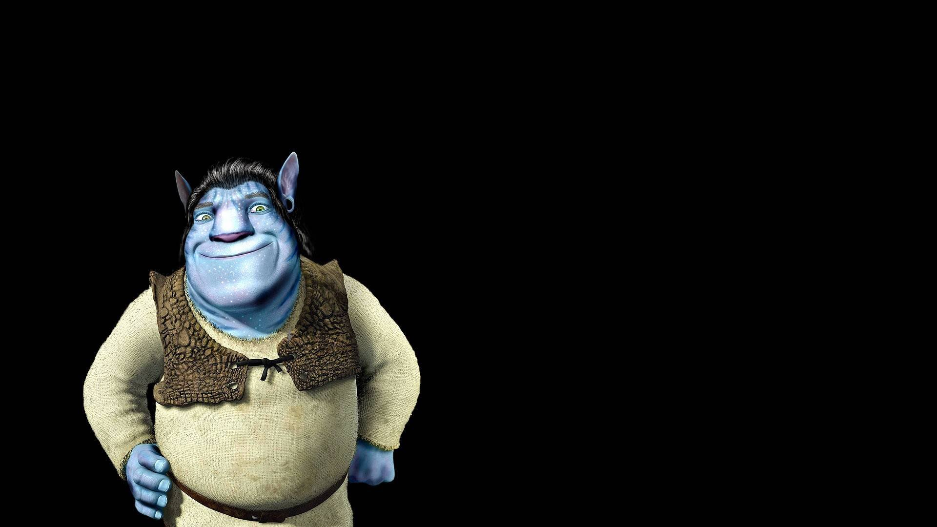 Shrek Hd Wallpapers And Backgrounds 1920x1080