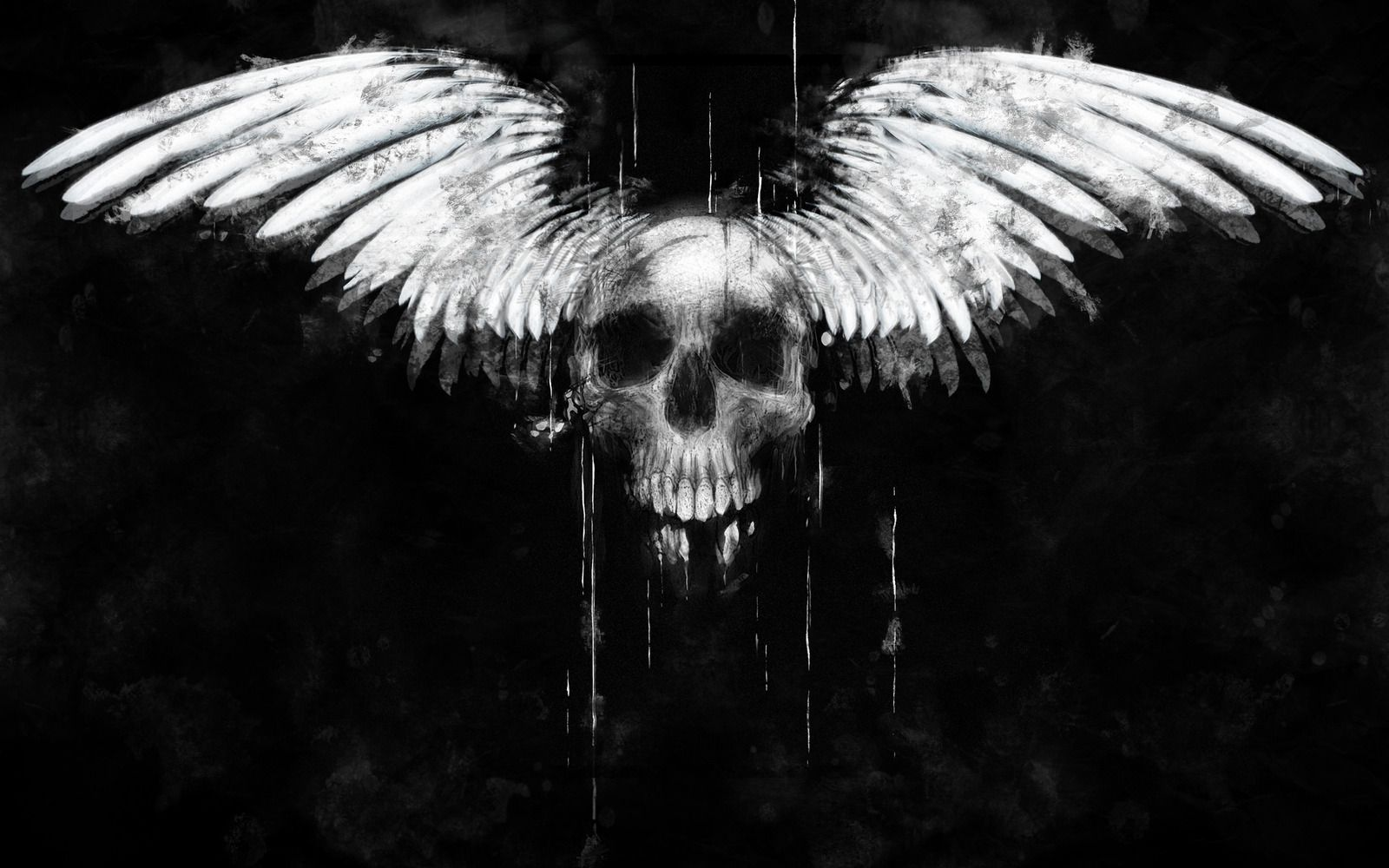 Evil Skull Hd Wallpapers Desktop Background with High Resolution 1600x1000