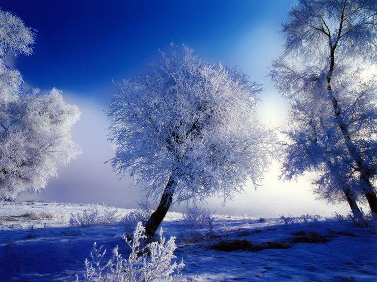 Beautiful Snowfall Season Wallpapers Warm Breath Feelings 740x555