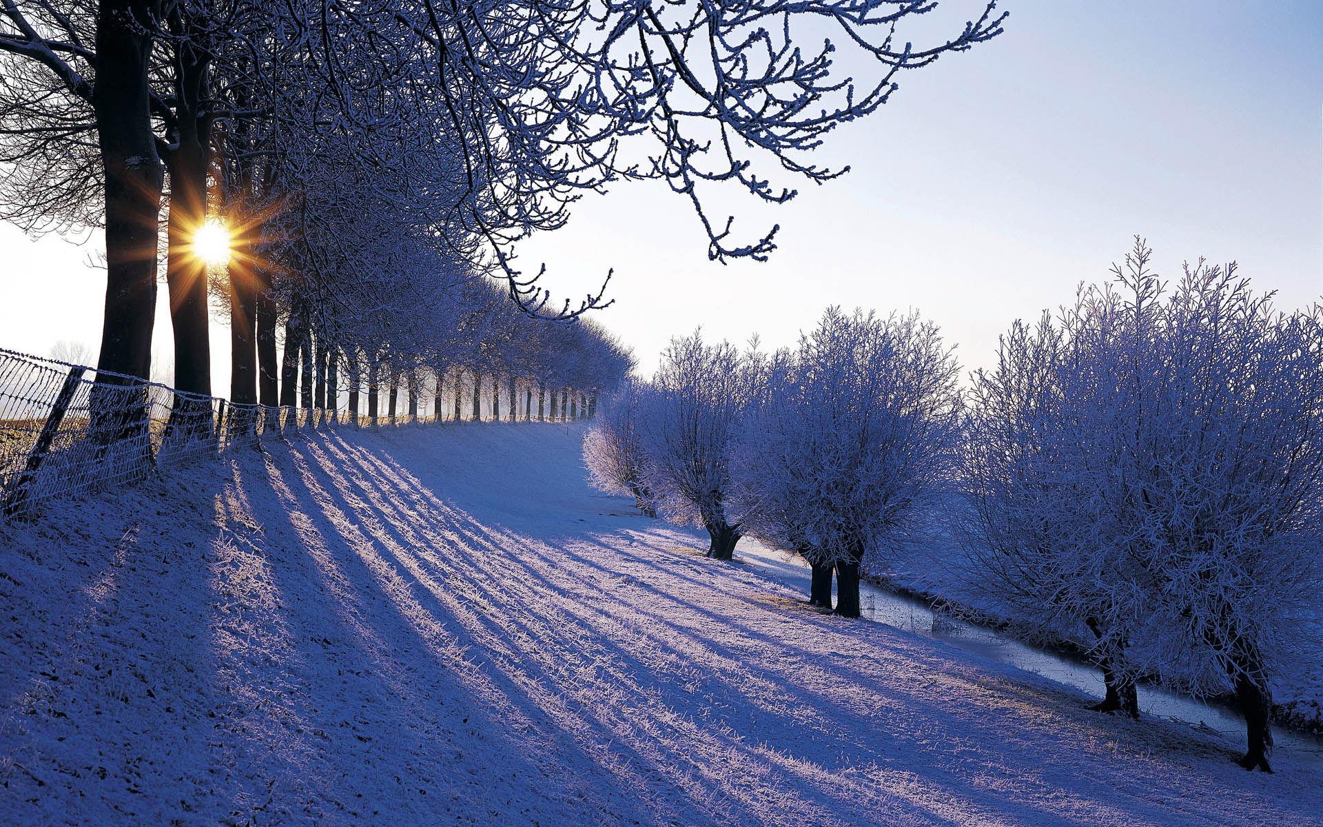Night Sky Snow Hd Desktop Wallpaper High Definition