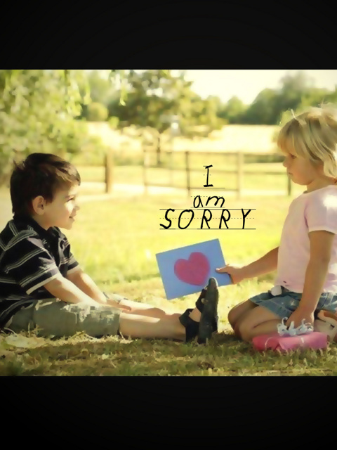 I M Sorry D HD With Sad Smily Face Wallpaper 480x640