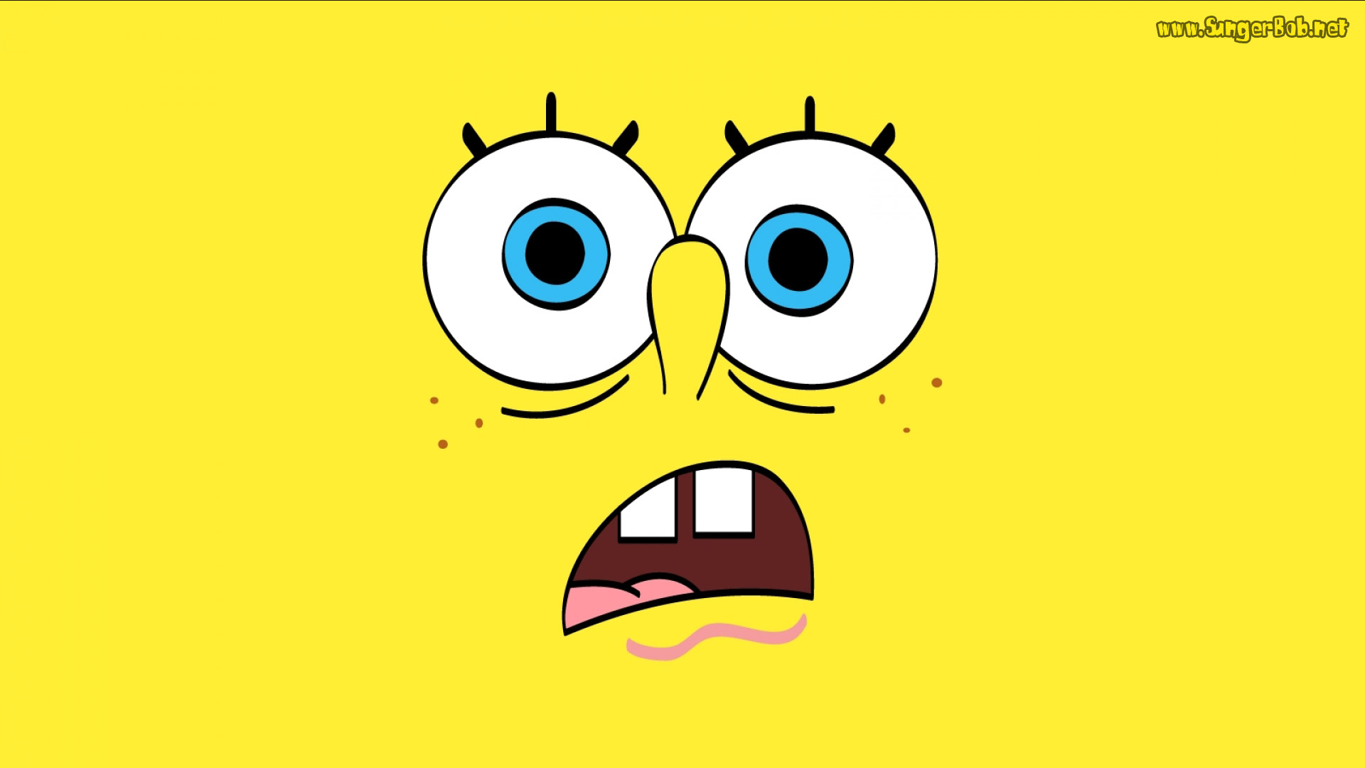 Spongebob Spongebob Squarepants Wallpaper Exo Pinterest 1920x1080