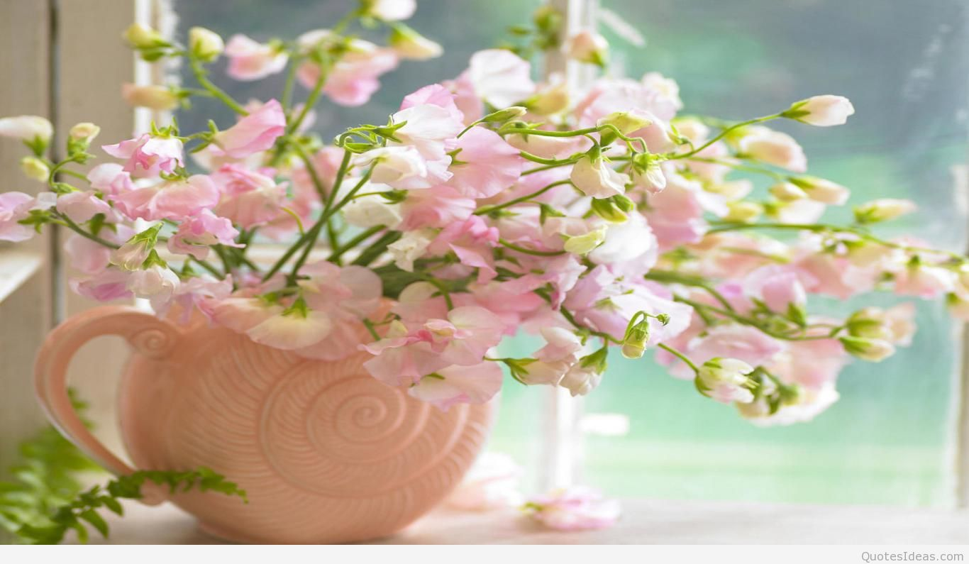Spring Flower Wallpaper Android Apps On Google Play 1366x795