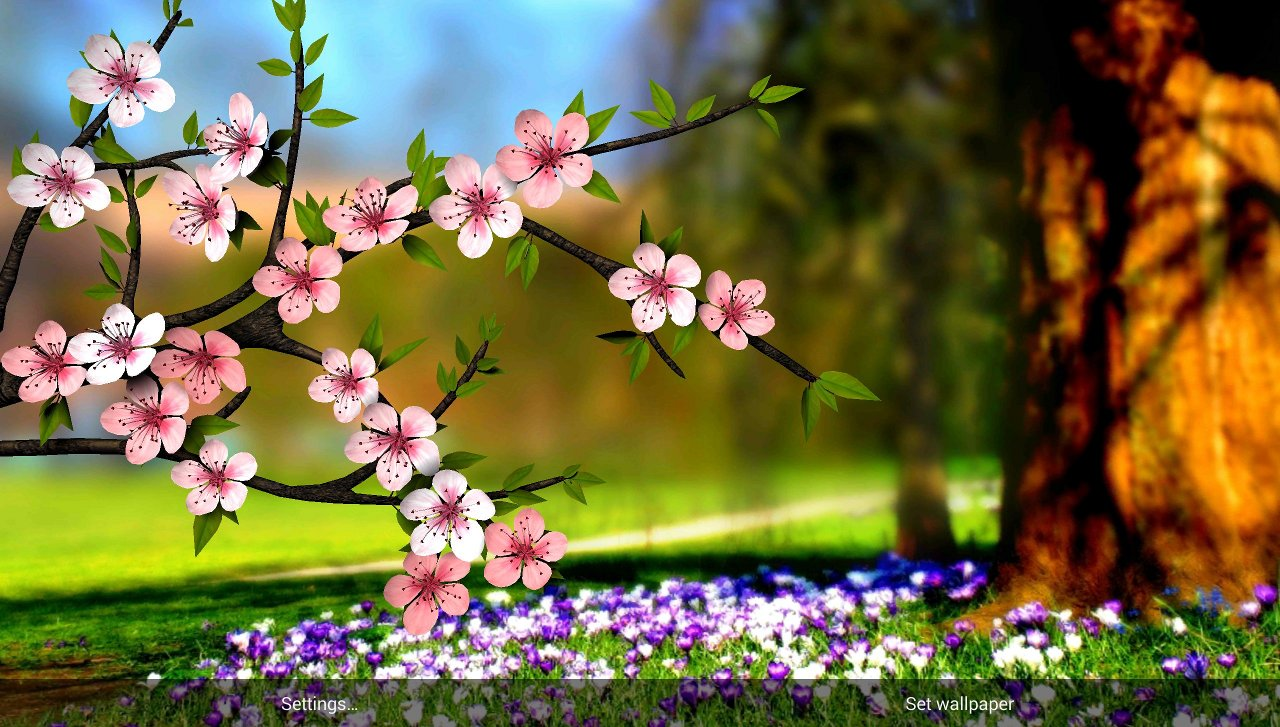 Spring flowers wallpaper nature wallpapers for free download about 1280x727