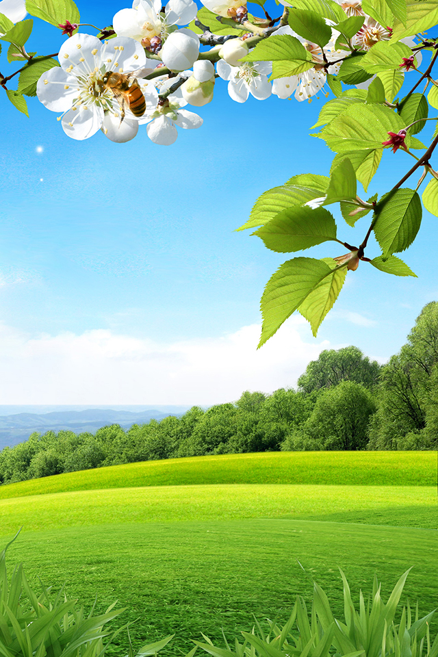 Spring Wallpaper  Android Apps on Google Play 640x960